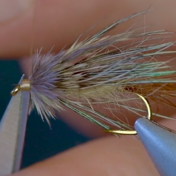 Trout Spey Flies @ Headhunters. Sparrow Tying Video