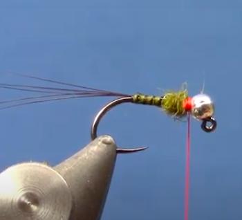 Goose Quill Tungsten Jig Nymph Dakota Angler Vid