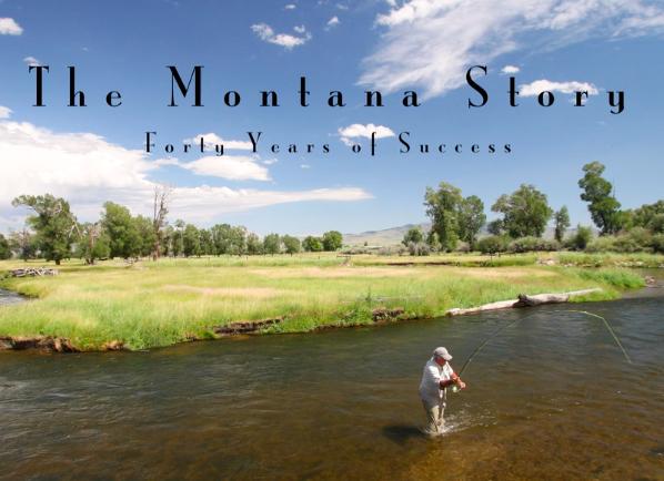 the Montana Story