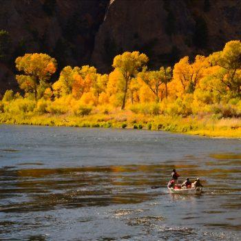 Missouri River Fishing Report 8.20.21